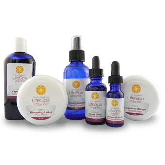 LifeSpa - Ayurvedic Skin Care Complete Set