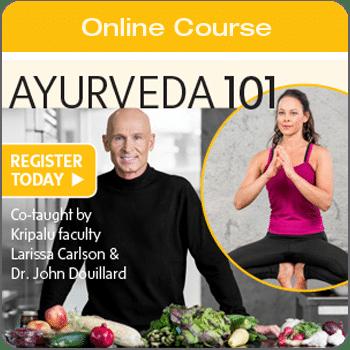 Sidebar_Ayurveda101_YogaJournal-ecourse