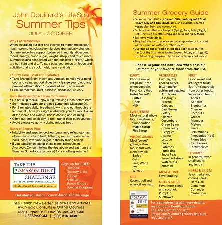 LifeSpa - Summer Grocery List image 1